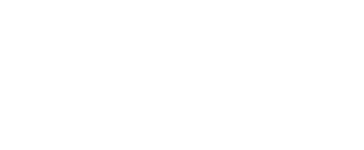Futurefly2
